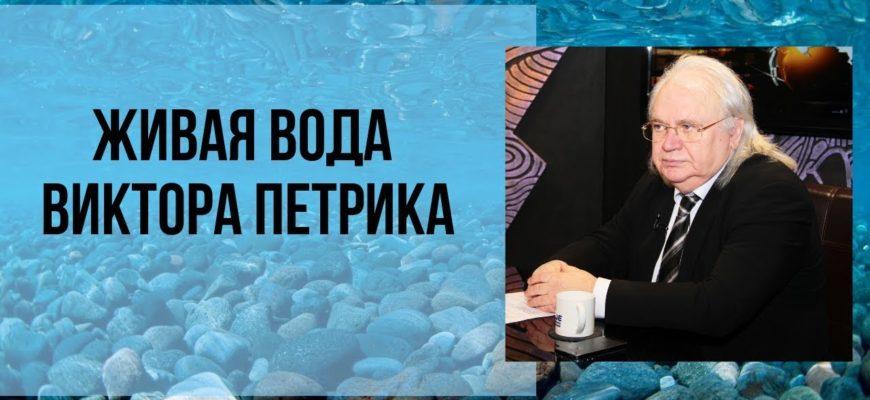 бывший зэк от партии Единая Россия Виктор Петрик ученые работы